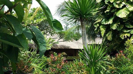 Bali Agung Village: Grounds