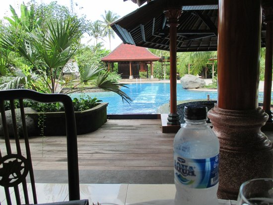 Bhuwana Ubud Hotel: Pool view from hotel restaurant