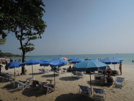 Tonsak Resort: 目の前に広がるビーチエリア