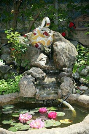 Hotel Vina del Mar Pineta: Fontanella in giardino ( con pescolini rossi)