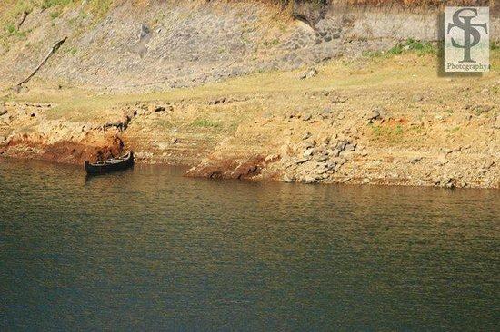 Aruvi Resorts : lake
