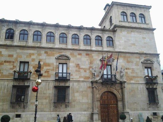 Palacio de los Guzmanes: Vista del recio Palacio con su torre.