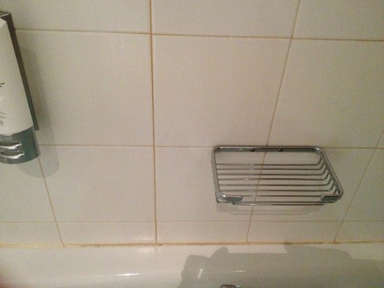 Clarion Hotel Liffey Valley: Filthy Grout