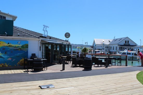 35 Degrees South Aquarium Restaurant & Bar: Right on the waterfront in central Paihia