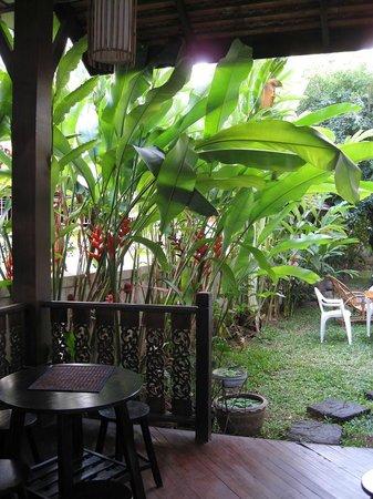 Elegant Lanna Boutique Guesthouse: вид на садик