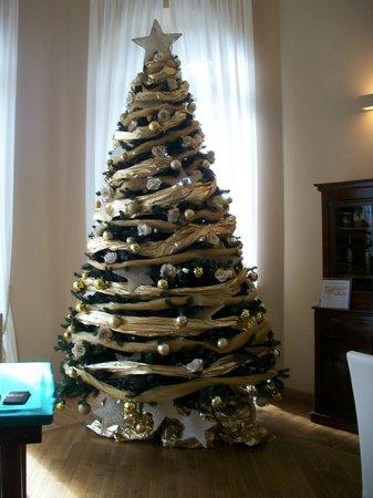 Hotel Villa Sylva : albero sala lettura