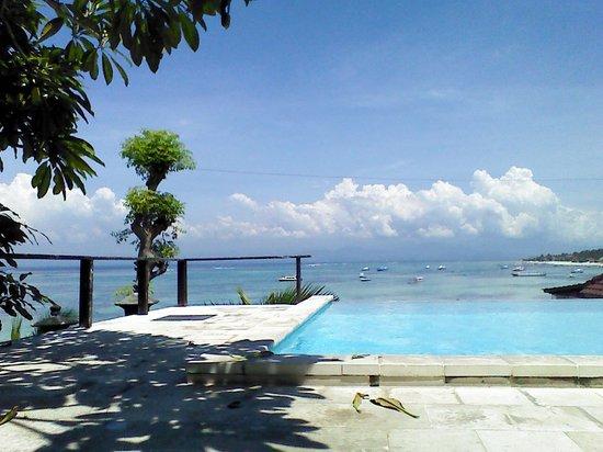 Lembongan Reef Bungalow: pool