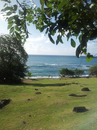 Karibea Resort Sainte Luce Amyris: Vue sur la mer