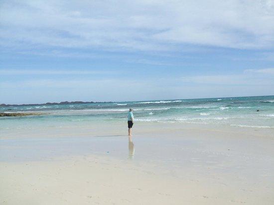 Suite Hotel Atlantis Fuerteventura Resort: Empty beaches