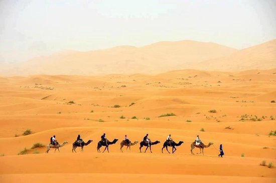 Morocco Excursions: Camel Trekking in Morocco
