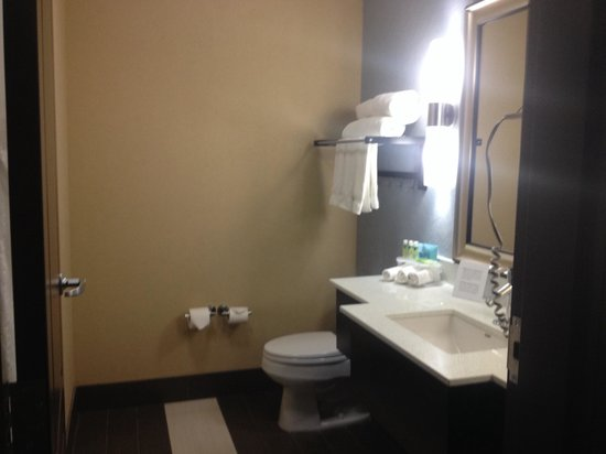 Holiday Inn Express Hotel & Suites Kansas City Airport: Very clean bathroom