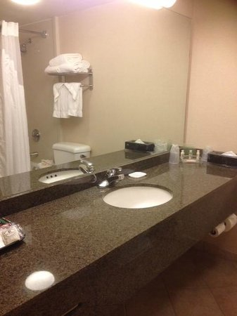 Holiday Inn Gaithersburg: Bathroom counter