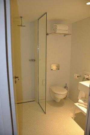 Grand Hotel Grenoble Centre: The wash Room