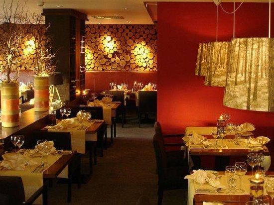 Hotel de Sterrenberg: Resturant