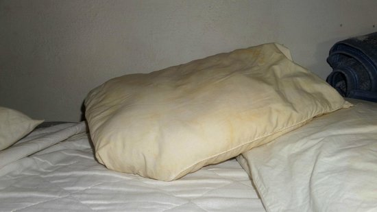 El Viajero Hostel Ciudad Vieja: The pillow. This stank of stale body fluids.