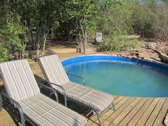 Pool at Changa Safari Camp