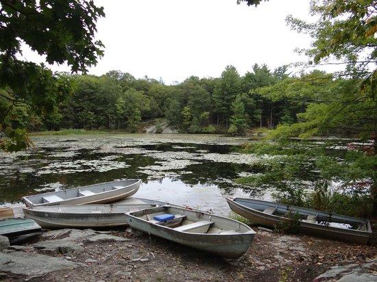 Arrow Park: Lake