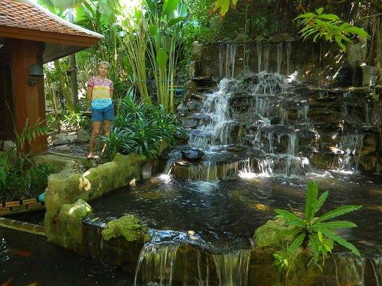 Diamond Cliff Resort and Spa : водопад на территории отеля