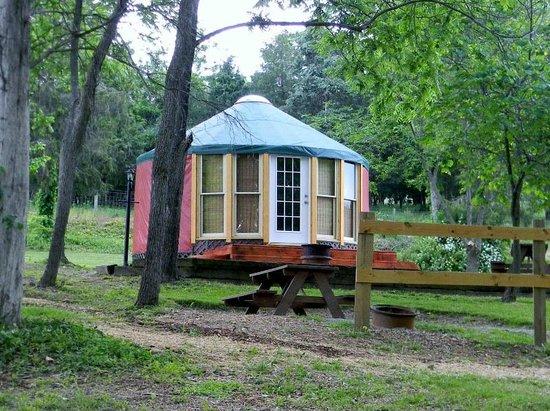 #1 Rock Tavern River Kamp : Painted Horse Yurt- sleeps up to 6