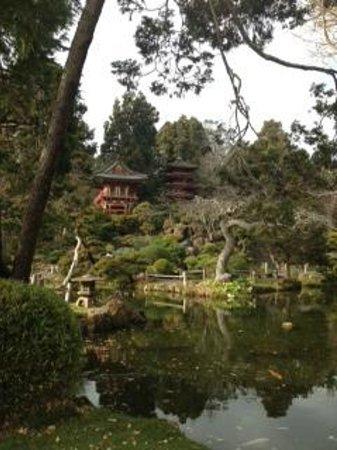 San Francisco City Guides : Japanese Tea Garden