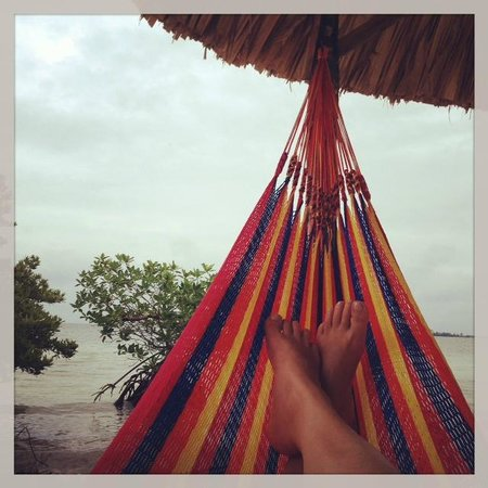 Coco Plum Island Resort: Relaxing in the hammocks