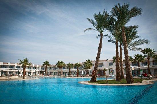 Dreams Vacation Resort : Бассейн в Vacation