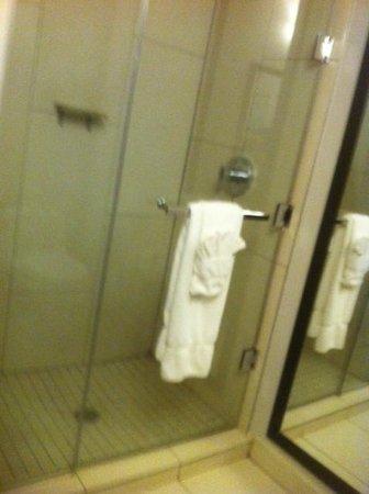 Ravel Hotel: Nice shower