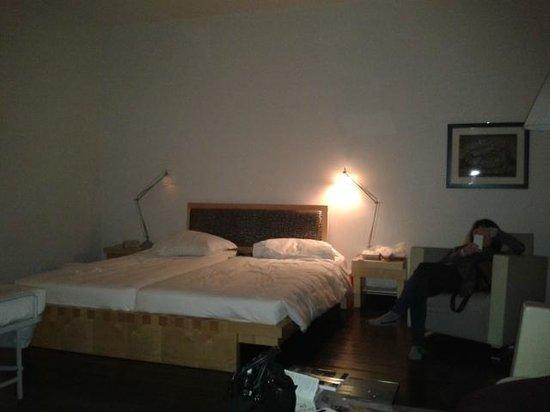 Hotel Greif: camera 102