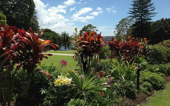 Government House : Beautifully Maintained Garden