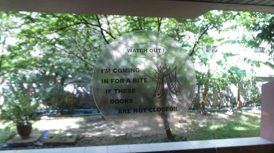 Phuket Orchid Resort & Spa: комар предупреждает :)
