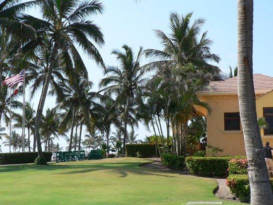Estrella Del Mar Resort Mazatlan: Palms
