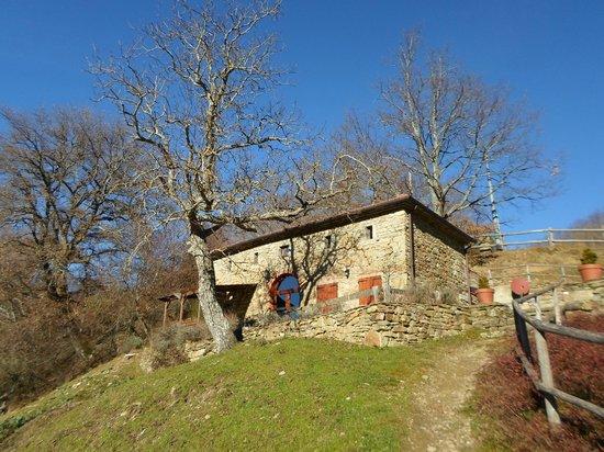 Farmhouse La Chiusa: seccatoio