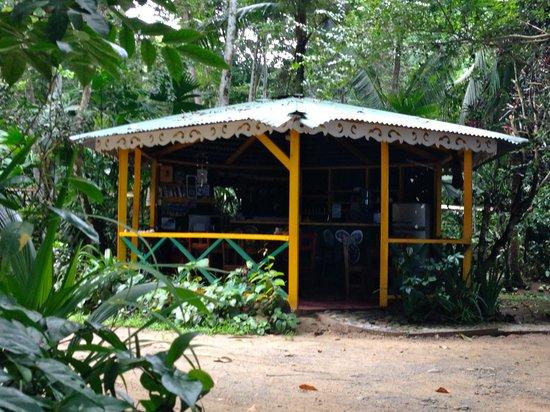 Cabinas Punta Uva : Gemeinschaftsküche