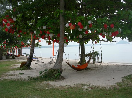 Viva Vacation Resort: hammocks for a nice nap