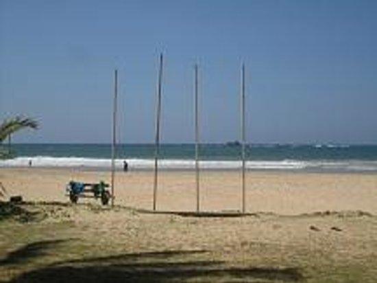 AVANI Bentota Resort & Spa: Direkter Strandbereich