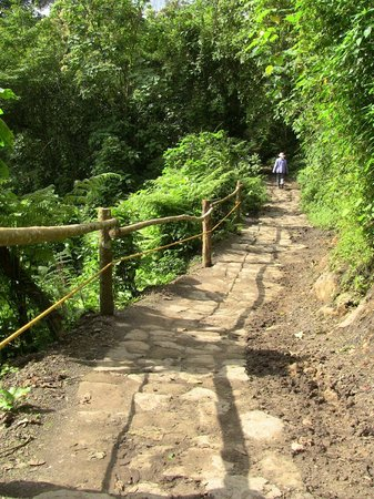 Parque Natural Chicaque: Almost arriving to El Refugio