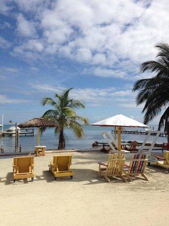 Tropical Paradise Hotel: Playa hotel