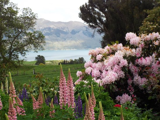 Lake Hawea Station: View of  Lake Hawea from the main house's lovely garden