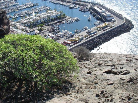 Cordial Mogan Playa: Fischer- und Jachthafen