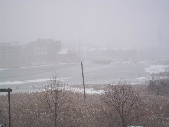 Hampton Inn Boston-Logan Airport: during that nasty blizzard....but everything was cozy and comfy from our room!