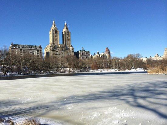 New York Hilton Midtown : Central Park