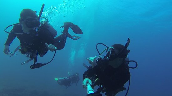 Fathom Five Divers : Father and Son