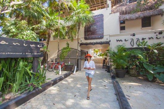 Mezzanine Colibri Boutique Hotel: Entrada