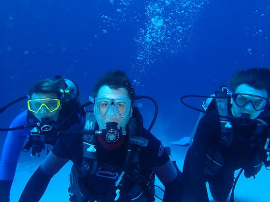 Dive with Cristina: Family picture