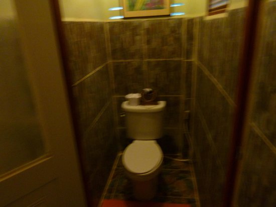 Viking Natures Resort : Toilet