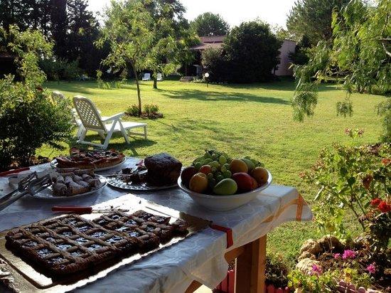 B&B Il Corbezzolo: Colazioni in giardino, il miglior modo di cominciare una giornata di vacanza.