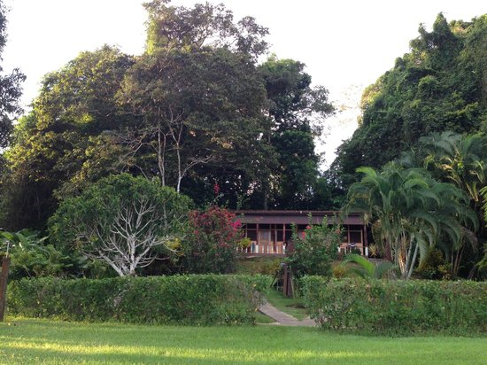 Drake Bay Wilderness Resort : All rooms have ocean view and have trees behind them and beautiful garden in front