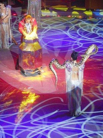 Nikulin Moscow Circus on Tsvetnoi Bulvar: Шоу ФОНТАН....цирк НИКУЛИНА