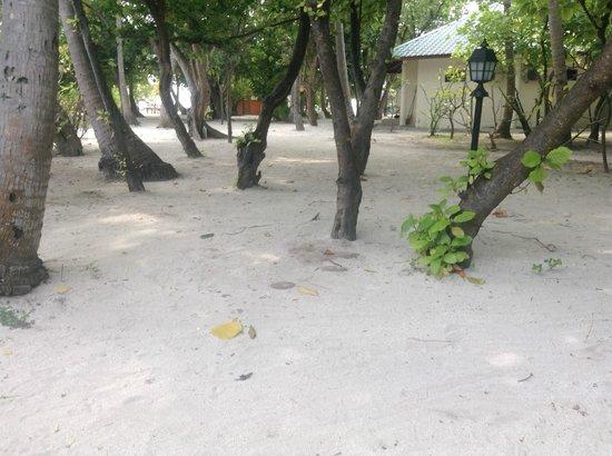 Embudu Village: vue