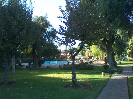 Golden Tulip Farah Marrakech : Zona parco attiguo alla piscina